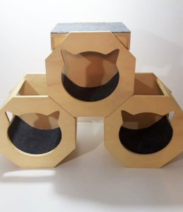 Kit com 03 nichos modulados e brinde prateleira