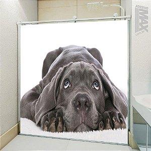 Adesivo Box - Cachorro Carinhoso