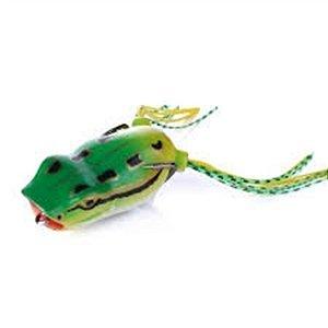 Isca Sapo Frog