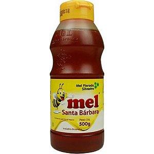 mel puro silvestre santa bárbara 500 g