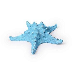Ornamento Resina Estrela do Mar Média Azul Claro Decorglass