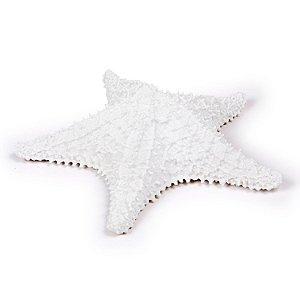 Ornamento de Resina Estrela do Mar Grande Branco Decorglass