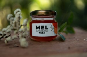 Mel de abelha Tiúba 90mL