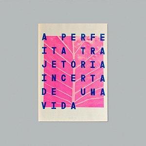 Print A3 - Trajetória
