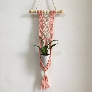 Mini Wall Hanger Rosa | 65cm x 15cm