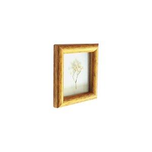 Quadro 15x15 cm Mosquitinho