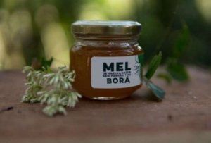 Mel de Abelha Borá 90ml