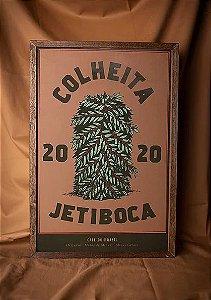 Pôster Colheita - Jetiboca