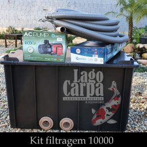 Filtra até 10.000 - Lago Carpa