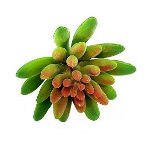 Suculenta Dedo de Moça em Silicone Verde Mesclado