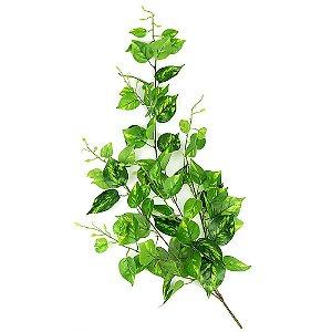 Pendente Folhagem com Folhas de Jiboia Rajada 84cm