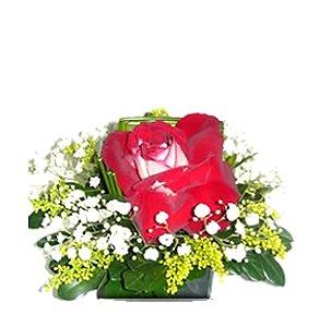 Rosa unitaria bicolor