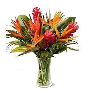 Jarra flores Tropicais
