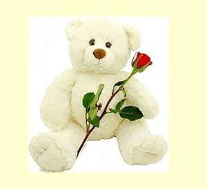 Urso pelúcia com 1 rosa