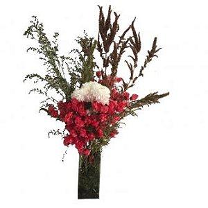Jarra de Flores Vermelhas