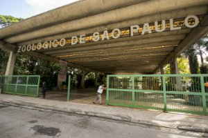 ZOOLÓGICO DE SÃO PAULO 23/10/2021 (SÁBADO)