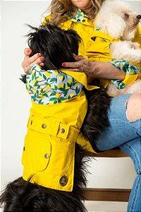 Trench coat  amarelo limao siciliano com capuz