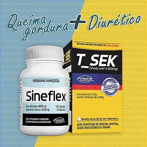 2 Sineflex + 2 T Sek - Originais da Power Supplements