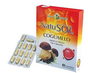 NatuSol Cogumelo (Agaricus Blazei) em cápsulas – Terra Verde