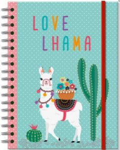 Caderno Colegial - Lhama - 96 folhas - Fina Ideia