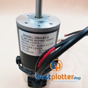 Motor Witcolor DBM60-8