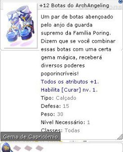 +12 Botas do ArchAngeling (Capricórnio)