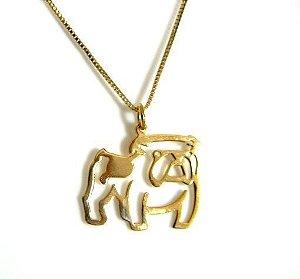 Colar Bulldog Inglês - Banho ouro Amarelo