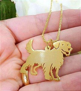 Colar Golden Retriever - Dourado