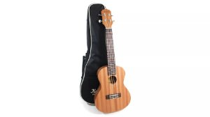 Ukulele Kalani Concert 24 Tribes Series Natural Com Bag