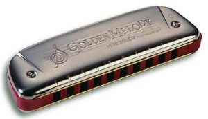 Gaita Harmonica Hohner Golden Melody 542/20 - D (RE)