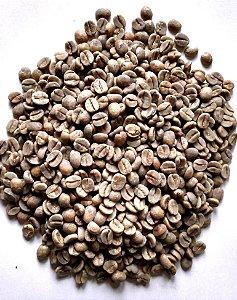 Café cru 250g