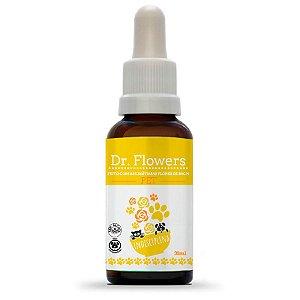 Dr Flowers Indisciplina Pet