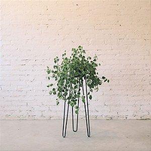 Suporte para planta N°2 - P