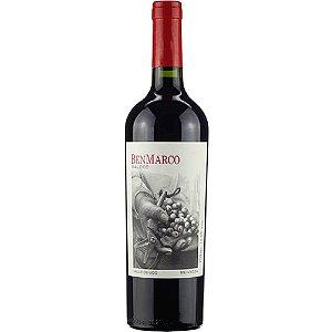 Vinho Benmarco Malbec
