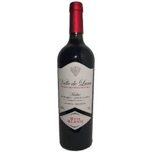 Vinho Valle de Luna Vineyard Selection Blend Malbec