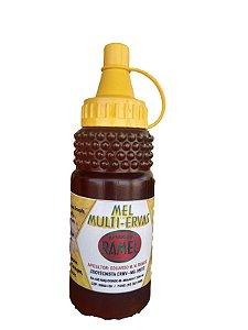 Mel Multi Ervas (Composto de mel, própolis, agrião, assapeixe, eucalipto, malva, tanchagem, poejo e alecrim). 270g