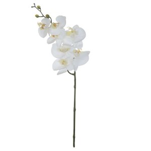 Orquídea Phalaenopsis Real Toque (Haste com 7 Flores) 63cm - Branco