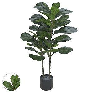Árvore Ficus Lyrata Real Toque (Plantada) - 1 metro