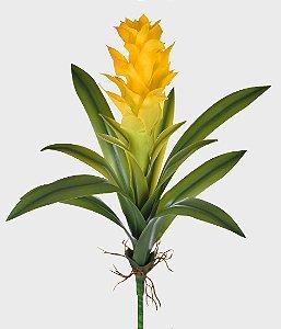 Bromélia com Raiz 55cm - Amarelo
