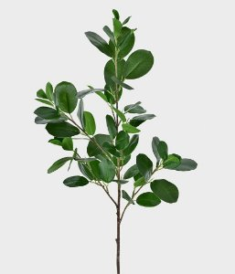 Haste Folha Buxinho - 90cm