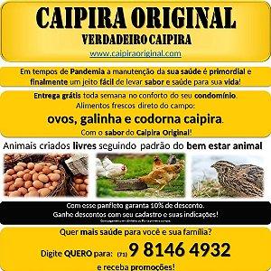 CAIPIRA ORIGINAL | Ovos, galinha e codorna caipiras