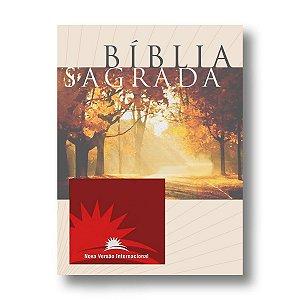BÍBLIA NVI MÉDIA BROCHURA
