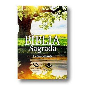 BÍBLIA NA065TILGI REFLEXO LETRA GIGANTE SEMI FLEXÍVEL ÍNDICE