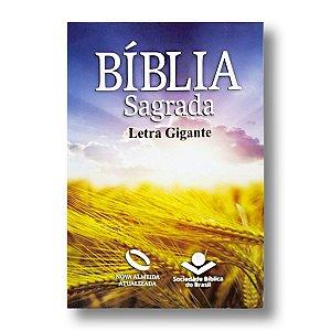 BÍBLIA NA060LGI LETRA GIGANTE BROCHURA TRIGO