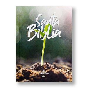 SANTA BIBLIA RVR050 REINA VALERA 1960 BROCHURA