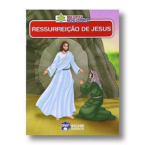 MINI BIBLIOTECA BÍBLICA - RESSURREIÇÃO DE JESUS