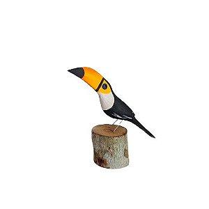 Pássaro de Madeira - Tucano