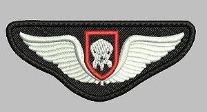BREVE COE - POLÍCIA MILITAR