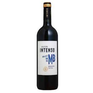 Vinho Argentino Salton Intenso Malbec 750ml