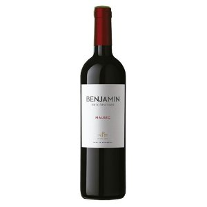 Vinho Argentino Benjamin Malbec 750ml
